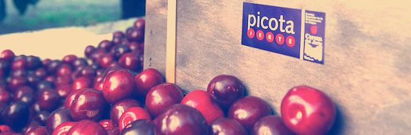 Jornadas-Picota-Jerte-Marketing-Diferenciacion-Javier-Varela2013_web